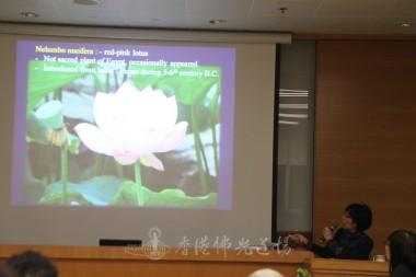 李美賢老師介紹蓮花的屬性。